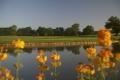 Morley Hayes Golf Club